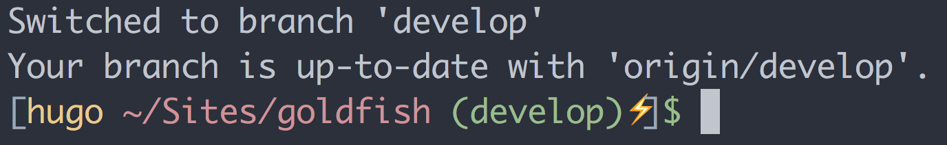 A display of my Git prompt including the branch name